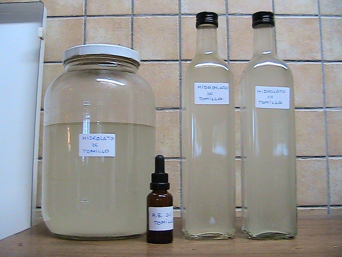 Hidrolato y aceite esencial de tomillo